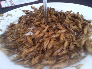 Salt and vinegar crickets